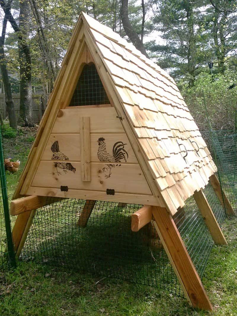 Building The Best Chicken Coop