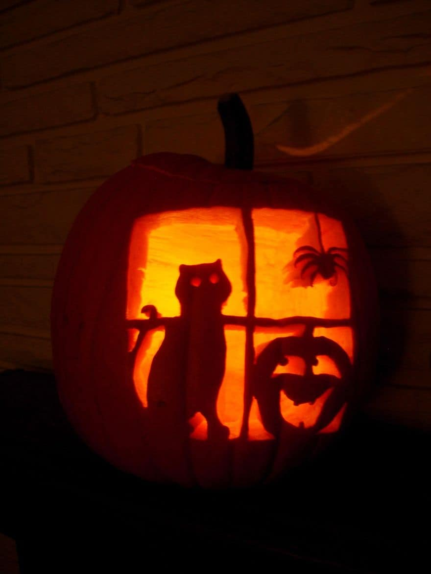 cat carved pumpkins ideas