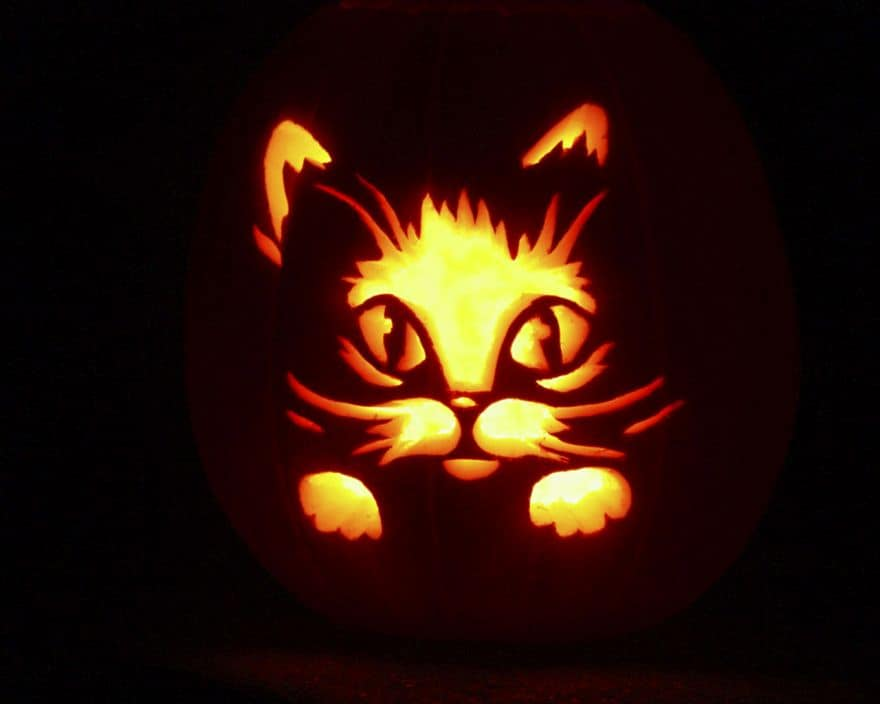 carving pumpkins ideas