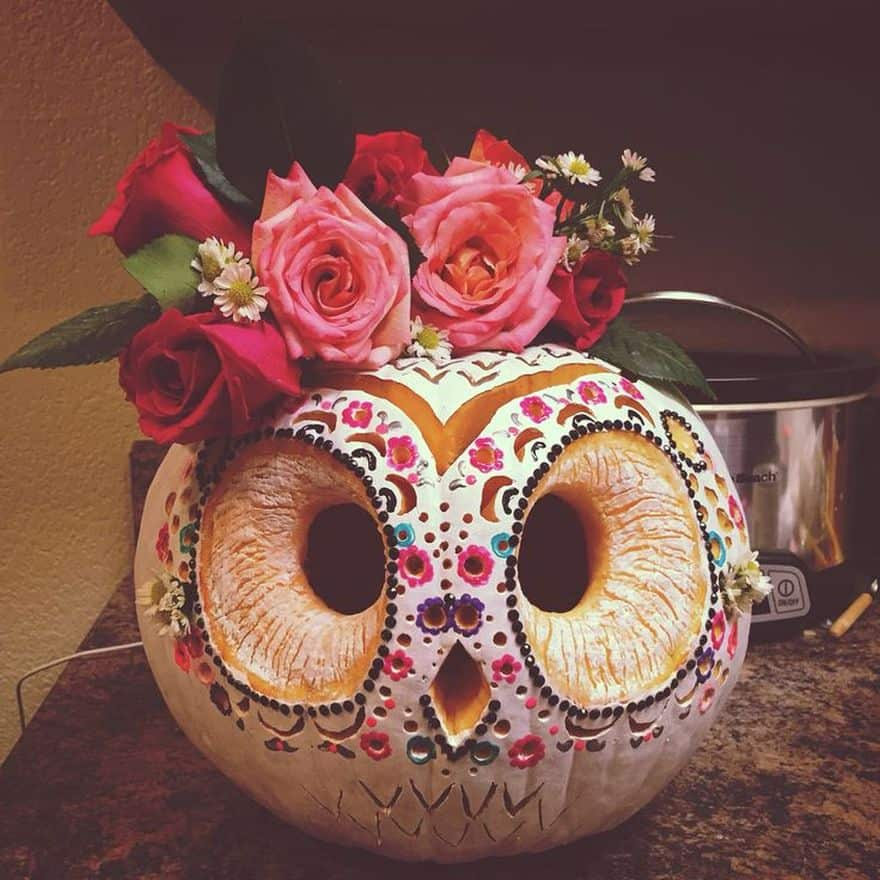owl Halloween pumpkin