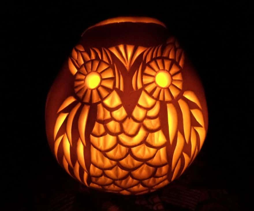 carved pumpkins ideas - owls