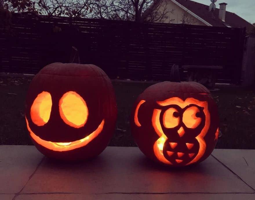 owl pumpkin ideas