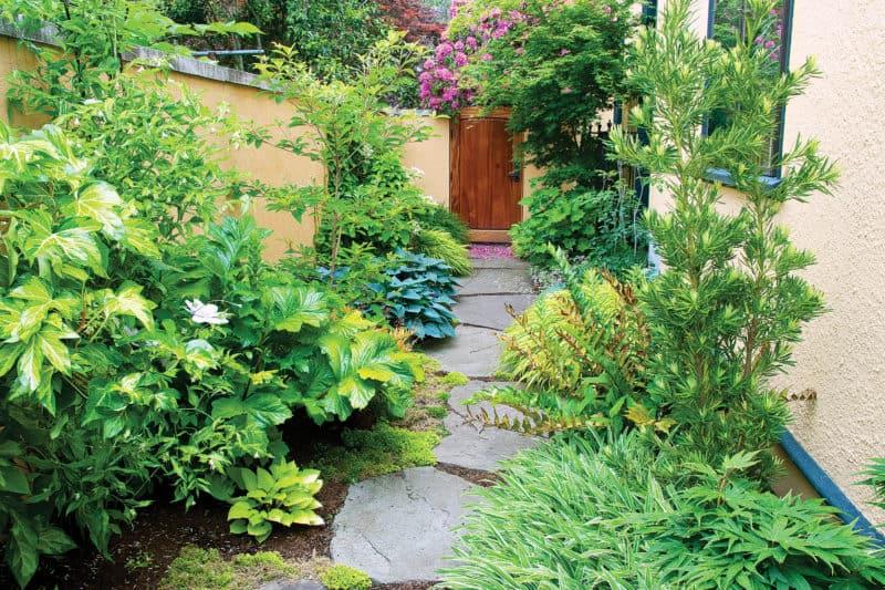 Shade Garden Bed Plan