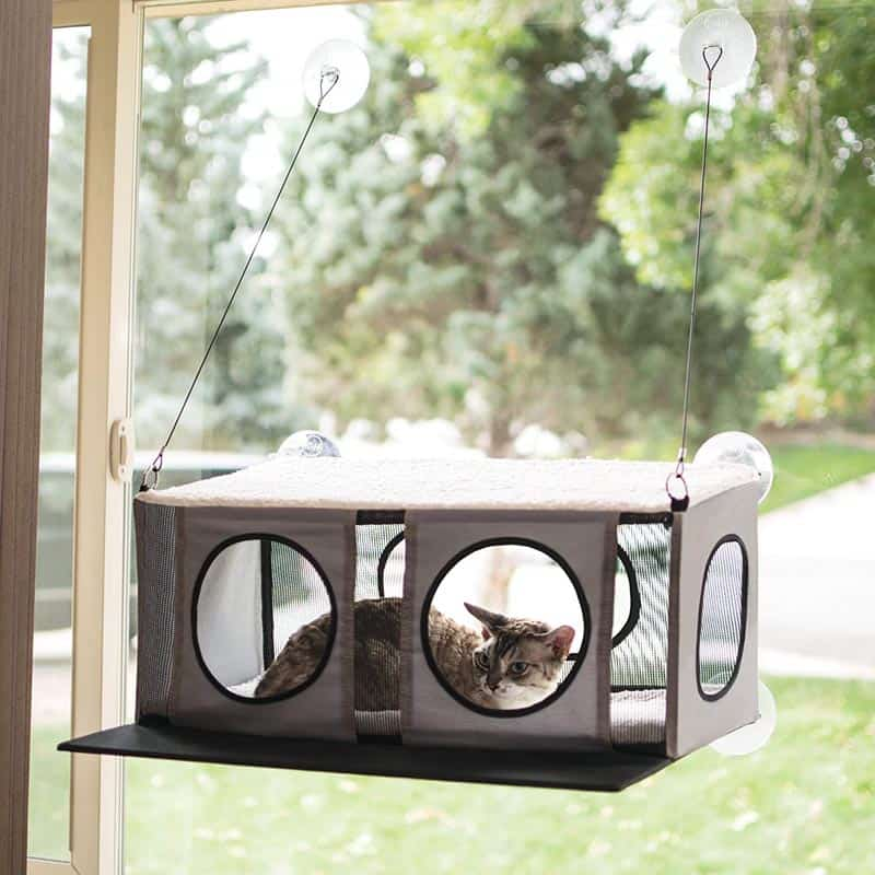 10 Top World's Best Window Cat Perches to Buy Right Now