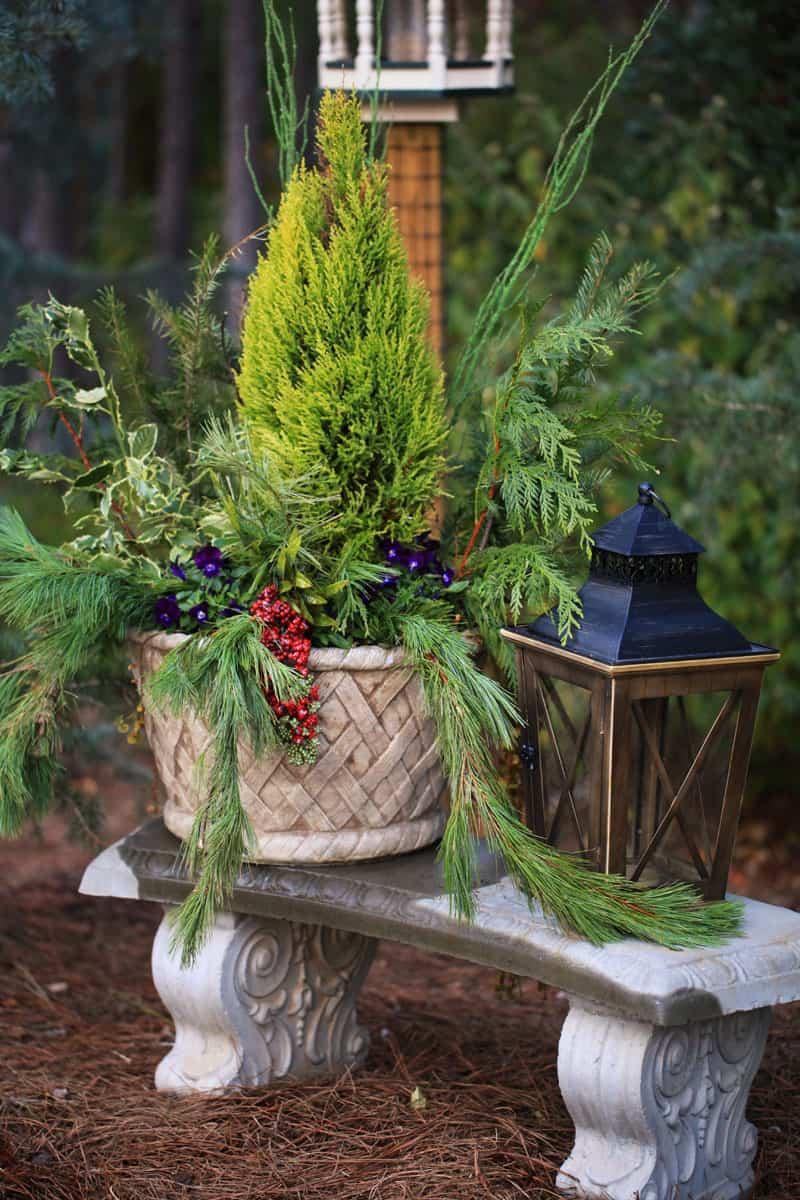 christmas garden designrulz (1)