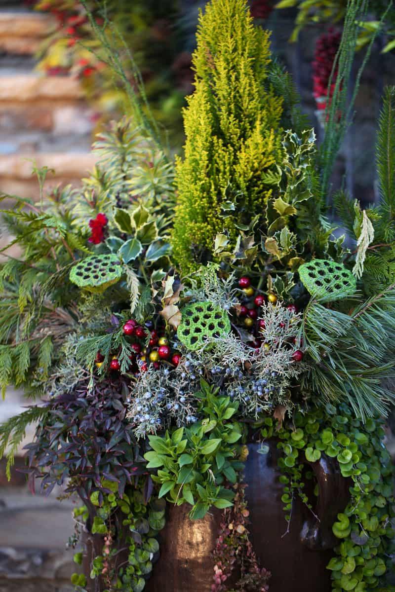christmas garden designrulz (22)