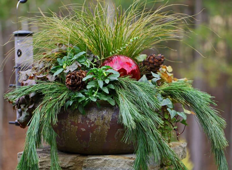 christmas garden designrulz (5)
